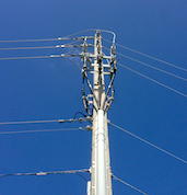 OkSolar.com Power Lines Solar Trees 4Kw Daily : Power Lines Solar Trees 4Kw Daily
