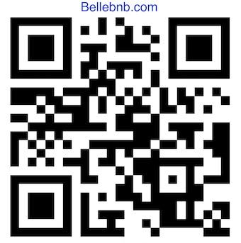 IQTraffiControl.com Hotel Doors QR Lock Opens : Bellebnb  Hotel QR Lock Opens your Hotel Doors for your Hotel, Bed and Breakfast! High Sercurity CE Certificated qr code door lock.